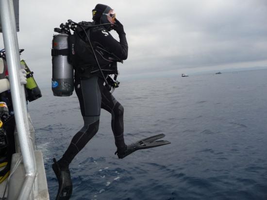 plongeur-2.jpg